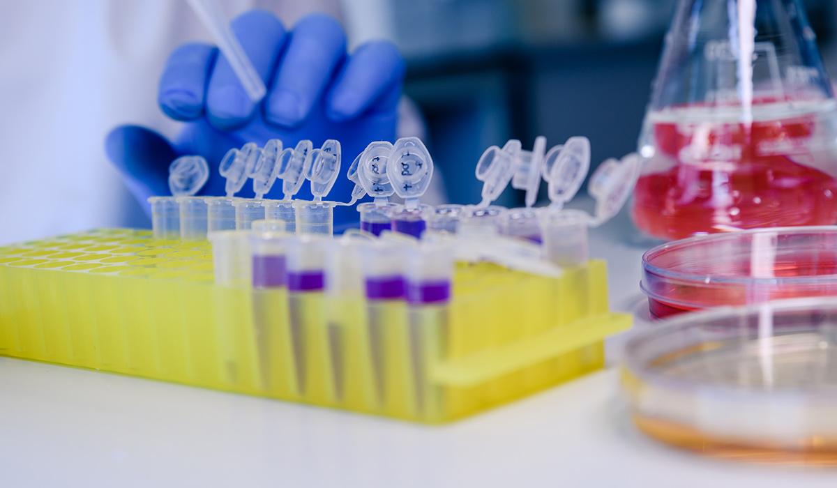Hamilelikte genetik bozukluklar